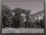 Yosemite Luxerious by PhotoKandi, Photography->Landscape gallery