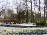 Park Ornaments by koca, photography->nature gallery