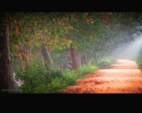 Red Road by sadun, Photography->Landscape gallery