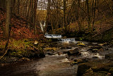 Bowlees by biffobear, Photography->Waterfalls gallery