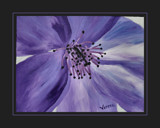 My Painting: Purple Bloom by verenabloo, Illustrations->Traditional gallery