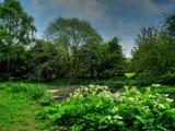 Clara Pond by biffobear, photography->landscape gallery