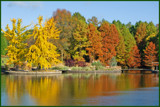Fall Colors by Ramad, photography->shorelines gallery