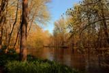 Calendar Garden River Walk by tigger3, photography->landscape gallery