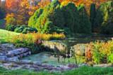 October's Golden Glow by Silvanus, photography->gardens gallery