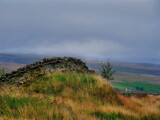Don't by biffobear, photography->landscape gallery