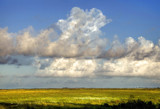 Wide Open Spaces by PatAndre, Photography->Landscape gallery