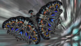 Fly By Flutter by Flmngseabass, abstract gallery