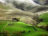 Sheep Station by biffobear, Photography->Landscape gallery
