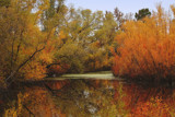 Reflections From The Marsh by Jimbobedsel, photography->shorelines gallery