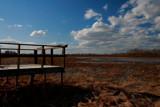 Bird watch by bgeek, photography->landscape gallery