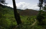 Cameron Highlands Tea Plantations 1 by shahzeb, Photography->Landscape gallery