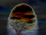 sky ablaze by dastpost, photography->manipulation gallery