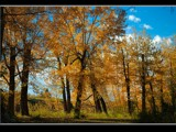 Fall Landscape by MiLo_Anderson, Photography->Landscape gallery