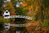 Somesville ME Foot Bridge by heidlerr, photography->bridges gallery