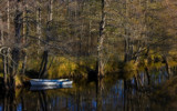 Solitary Rowboat by SEFA, Photography->Boats gallery
