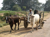 Non poluting transport by silicon, Photography->Transportation gallery