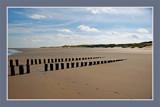 Zeeland Coast (23), 'Endless' Beach by corngrowth, Photography->Shorelines gallery