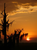 Black Bayou by regmar, Photography->Sunset/Rise gallery