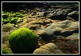 Shoreline by Corconia, Photography->Shorelines gallery