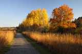 A Very Pleasant Walk by Silvanus, photography->landscape gallery