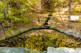 Reflecting on Fall by Pistos, photography->gardens gallery