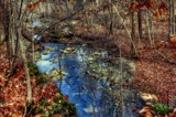 A River Runs Through It by tigger3, photography->nature gallery