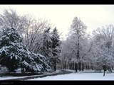In the park by ekowalska, Photography->Landscape gallery