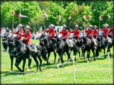 Musical Ride - Royal Canadian Mounted Police by icedancer, photography->people gallery