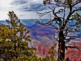 Grand Canyon View by Flmngseabass, Photography->Landscape gallery