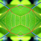 kolydoskope square 1 by Samatar, Photography->Manipulation gallery