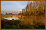 Zeeland Polder In The Fall by corngrowth, Photography->Landscape gallery