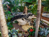 Sea Turtle Lego Sculpture by Pistos, photography->sculpture gallery