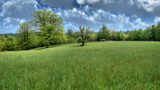 Appalachian Green by Akeraios, photography->manipulation gallery