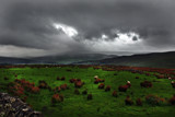 Storm brewing by biffobear, Photography->Landscape gallery