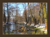 spring? by ekowalska, Photography->Landscape gallery