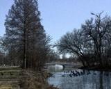 New Bridge by jojomercury, photography->manipulation gallery