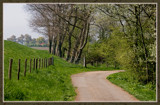 Walcheren Country Roads & Paths 16 by corngrowth, Photography->Landscape gallery