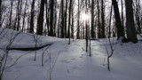winter hike by happy2seeyou, photography->landscape gallery