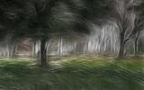 The Forest by casechaser, abstract->surrealism gallery