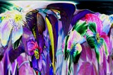 A Carnival Of Clematis by LynEve, photography->manipulation gallery