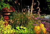 A Calendar Setting by tigger3, photography->gardens gallery