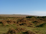 Dartmoor by qpalzm, Photography->Landscape gallery