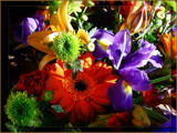 Happy Bouquet by LynEve, Photography->Flowers gallery