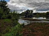 Shibdon by biffobear, photography->landscape gallery