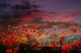 Flowers by biffobear, photography->manipulation gallery