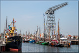 Maritime Festival 7 by corngrowth, photography->boats gallery