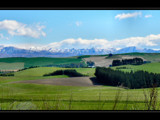 Winter White & Spring Green by LynEve, Photography->Landscape gallery