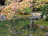 Fall Transition by mrosin, Photography->Gardens gallery