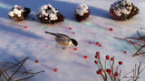 Chickadee Winter by Akeraios, computer->landscape gallery